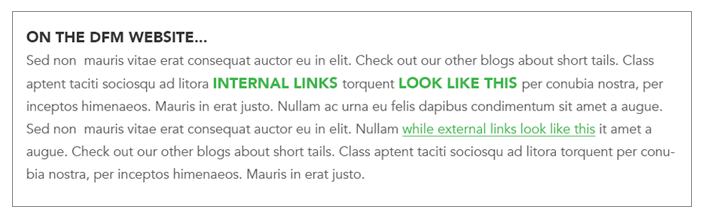 Make sure you distinguish between internal and external links in your CSS design.